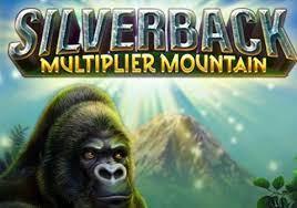 Silverback multiplier mountain hlavní strana
