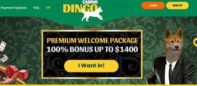 Online casino Dingo nabízí zajímavé bonusy